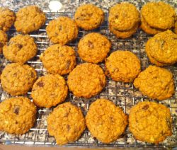 anything-goes-oatmeal-cookies